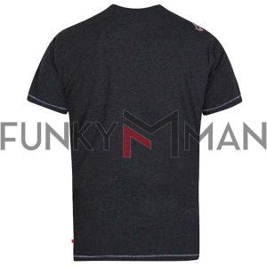 Κοντομάνικο Crew Neck T-Shirt DUKE KS60643 SIMMONS SS20 Ανθρακί