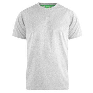 T-Shirt DUKE KS16580 FLYERS-1 SS20 ανοιχτό Γκρι