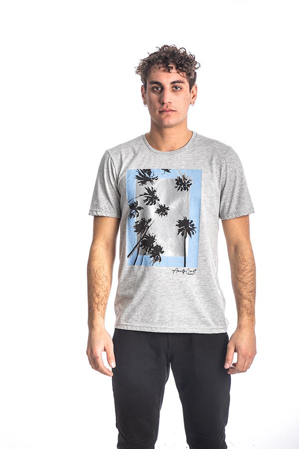 Κοντομάνικη Μπλούζα T-Shirt Paco & CO 213502 Γκρι